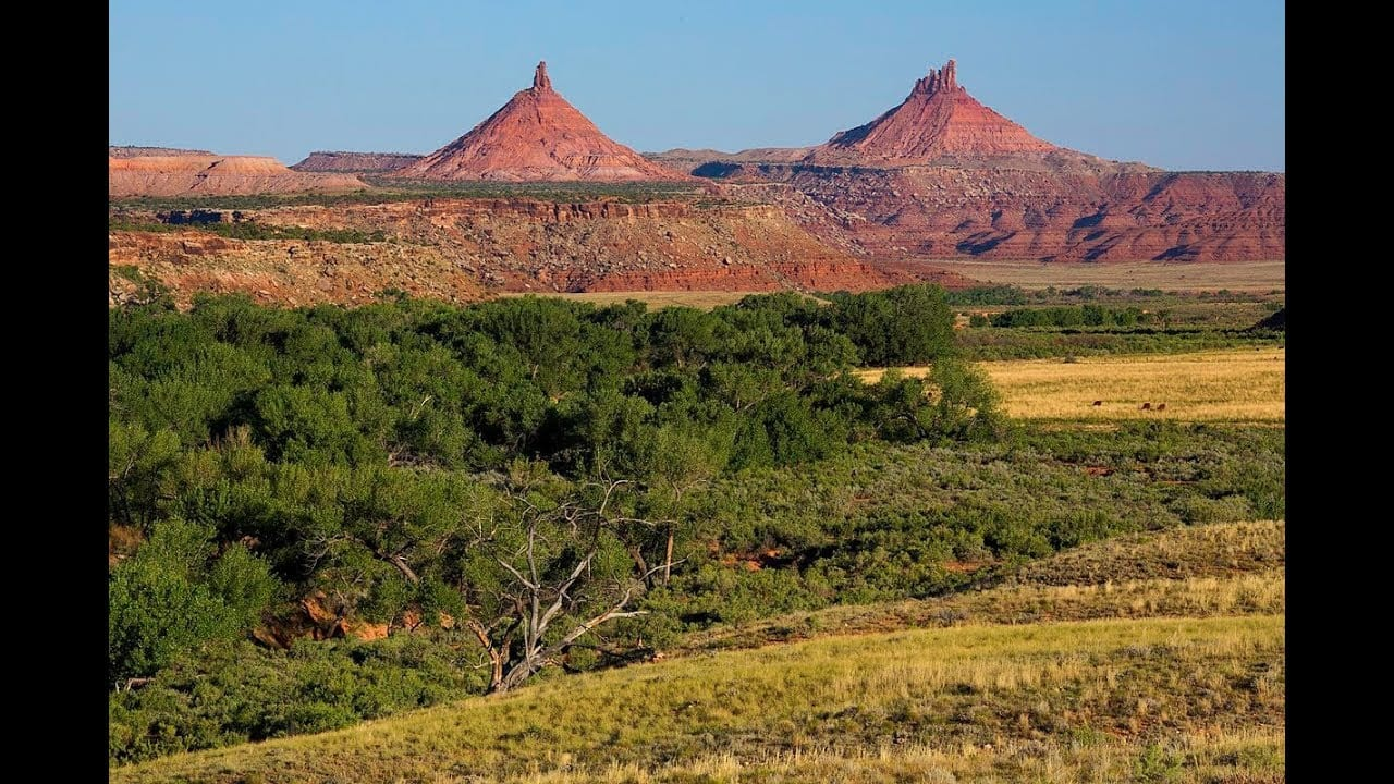 Trump's Attack on Bears Ears Native Monument–Here's What You Can Do